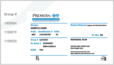 New Secure Site for Premera 2020 Individual Health Plans ...